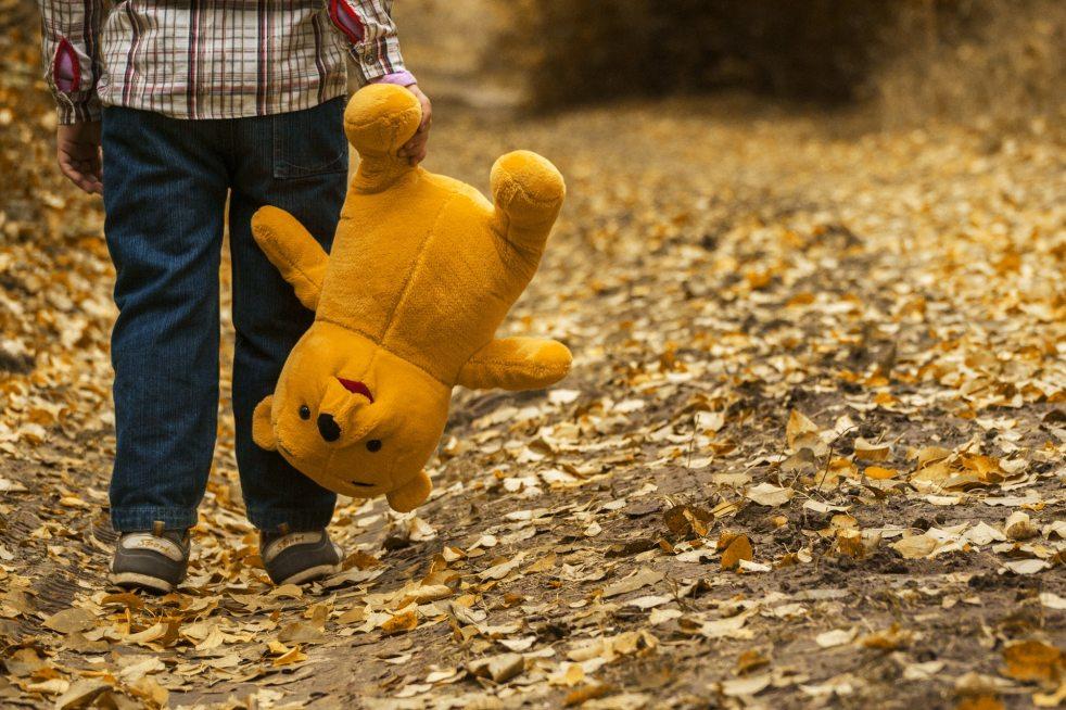 child-autumn-bear-leaves